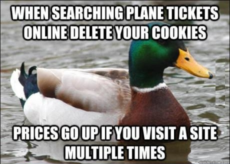 plane ticket costs