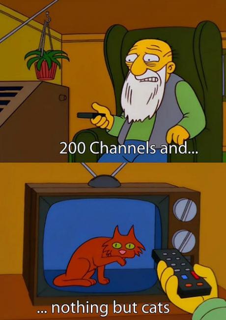 cat 200