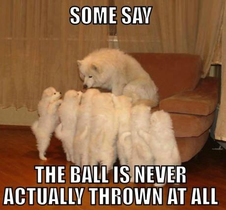 ball never thrown
