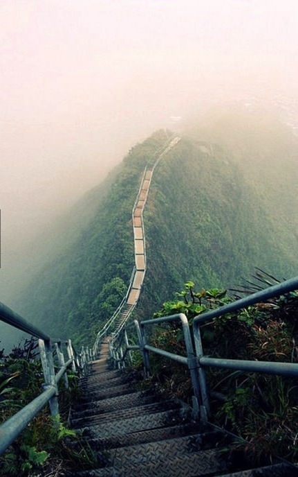 mountain walk path