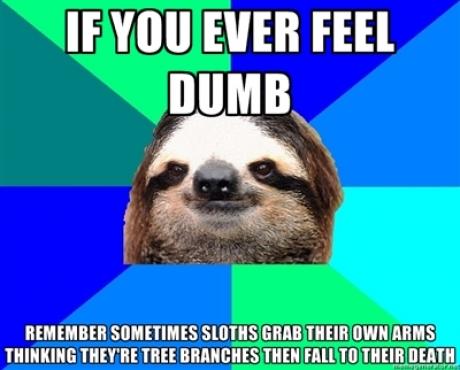 sloths arm grab
