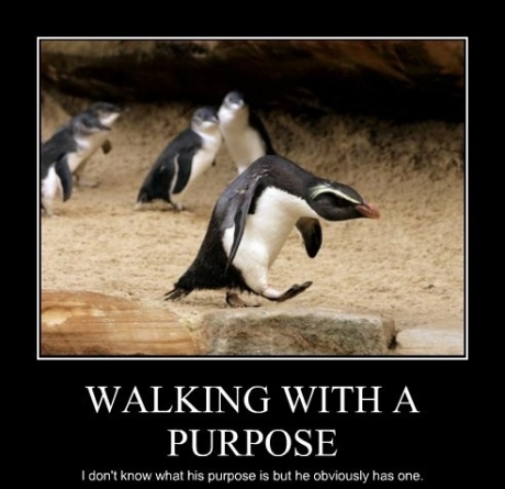 walking purpose