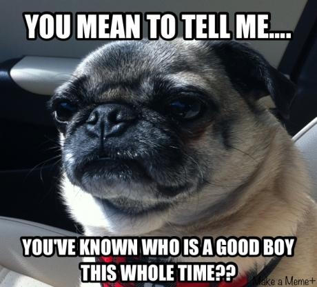 whos a good boy