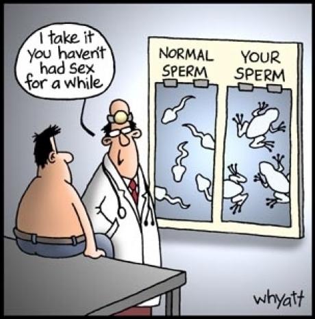 sperm awhile