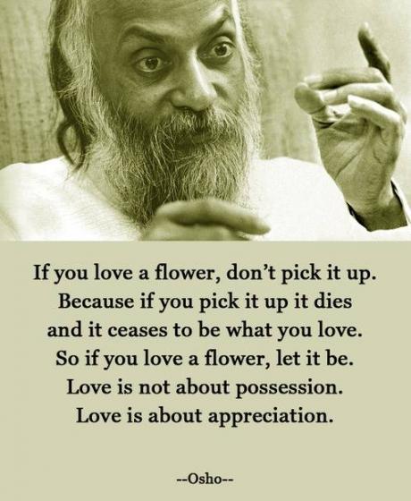 love appreciation