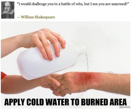 Shakespearean Burn Slaymyboredom