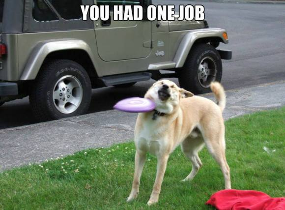 dog one job