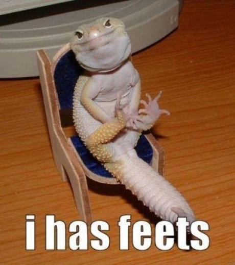 has feets