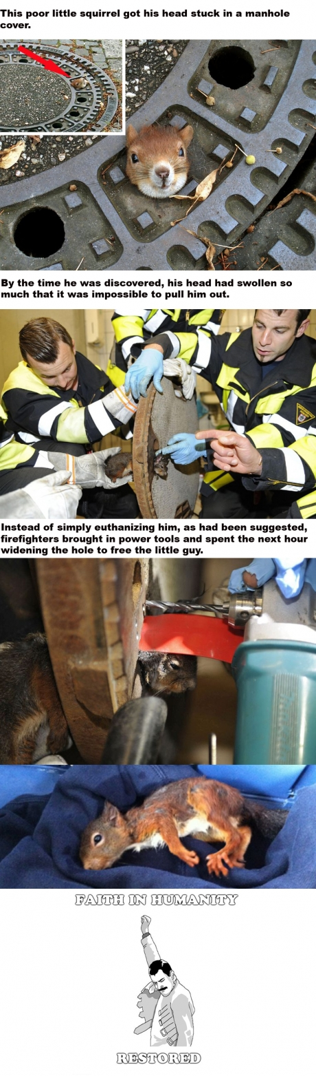 firefighters save squirrel