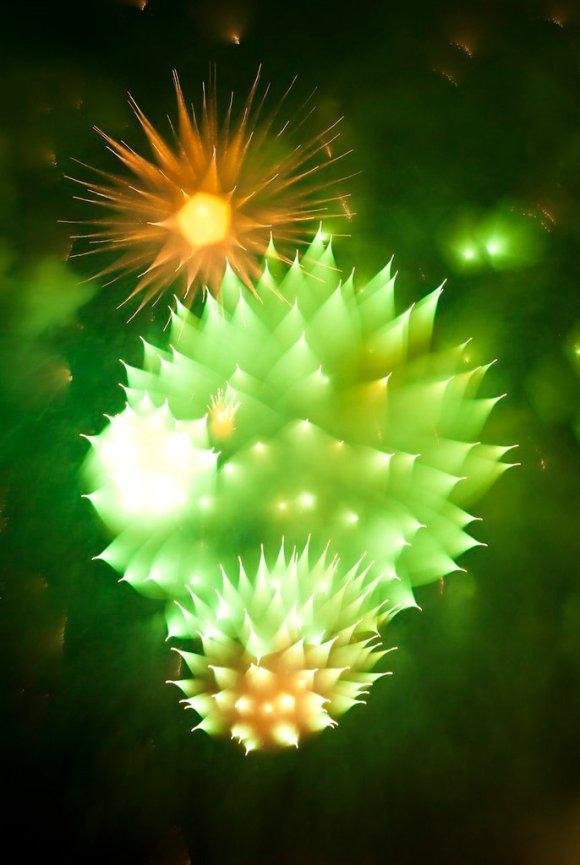 fireworks focus